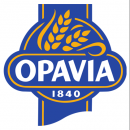 Opavia. Партнер WORKINTENSE